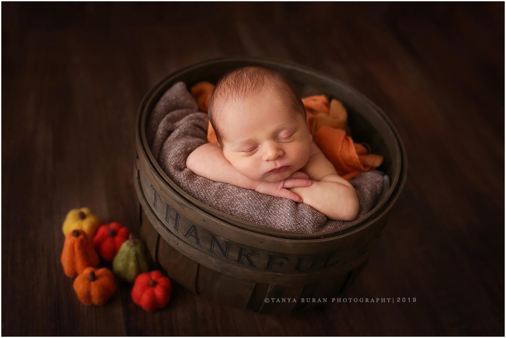 Jersey city newborn photographer tanya buran photography